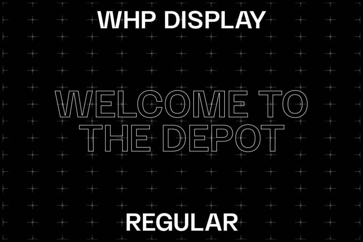 WHP TYPE 02 1250x833
